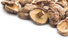 Cogumelos de shiitake secados Imagens de Stock Royalty Free