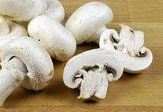 Cogumelos de tecla Imagem de Stock