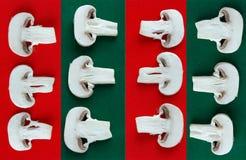 Cogumelos de tecla crus cortados Fotografia de Stock