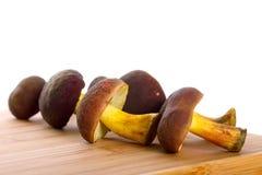 Cogumelos deliciosos para cozinhar Fotos de Stock