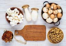 Cogumelos diferentes na vista superior fotografia de stock