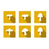 Cogumelos do ícone Imagem de Stock