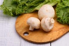 Cogumelos do cogumelo em uma placa de madeira fotografia de stock