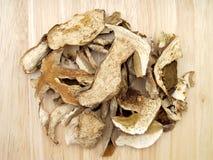 cogumelos do porcini Fotografia de Stock