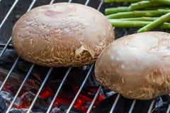 Cogumelos do portobello do churrasco Foto de Stock Royalty Free