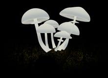 cogumelos do sumário 3d em um fundo preto Foto de Stock Royalty Free