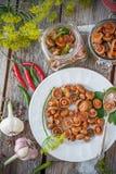 Cogumelos do tampão do leite do aç6frão Fotos de Stock Royalty Free