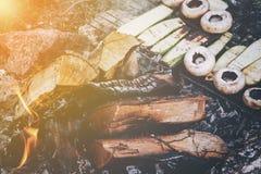 Cogumelos e churrasco frescos do abobrinha em um assado exterior Foto de Stock Royalty Free