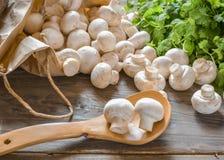 Cogumelos e da grama vida ainda, isolada no fundo de madeira Fotografia de Stock Royalty Free