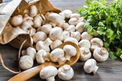 Cogumelos e da grama vida ainda, isolada no fundo de madeira Imagem de Stock