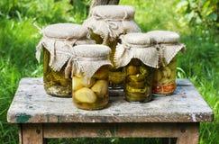 Cogumelos e pepinos conservados Fotografia de Stock