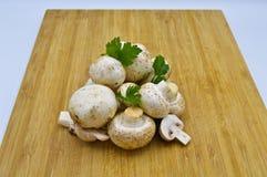 Cogumelos e salsa frescos comest?veis da cultura imagens de stock royalty free