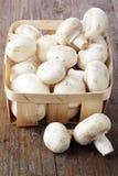 Cogumelos em uma cesta Foto de Stock Royalty Free