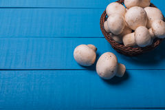 Cogumelos em uma cesta Imagens de Stock Royalty Free
