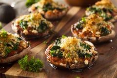Cogumelos enchidos cozidos caseiros de Portabello Imagens de Stock Royalty Free