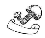 Cogumelos Entregue a ilustração tirada no papel pelo lápis, pela tinta, pela aquarela e pela caneta com ponta de feltro sobre o f Imagens de Stock Royalty Free