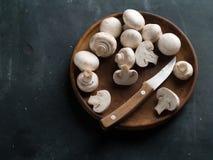 Cogumelos frescos Foto de Stock