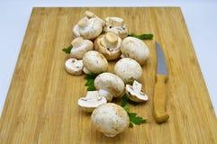 Cogumelos frescos comestíveis da cultura, salsa, pimenta verde foto de stock royalty free