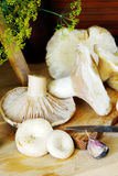 Cogumelos frescos do leite na tabela de madeira Foto de Stock