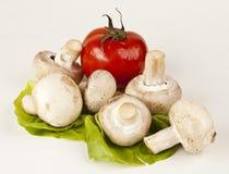 Cogumelos frescos e um tomate Foto de Stock Royalty Free