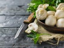 Cogumelos frescos em uma bacia e em uma salsa da argila em uma tabela de madeira rústica O alimento do vegetariano está na tabela Imagem de Stock