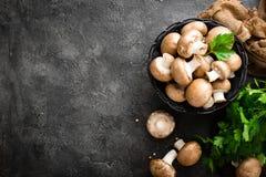 Cogumelos Cogumelos frescos na cesta fotos de stock