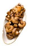 Cogumelos fritados. Fotos de Stock Royalty Free