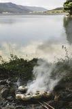 Cogumelos grelhados no carvões na natureza fotografia de stock