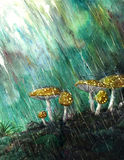 Cogumelos na chuva Fotos de Stock Royalty Free