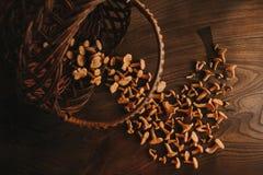 Cogumelos na tabela fotografia de stock