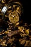Cogumelos no frasco Fotografia de Stock Royalty Free