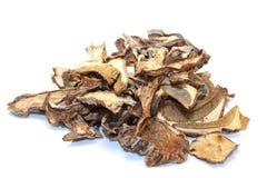 Cogumelos no fundo branco Imagens de Stock Royalty Free
