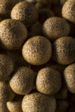Cogumelos orgânicos crus da faia de Brown Foto de Stock Royalty Free