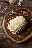Cogumelos orgânicos crus de Enoki Fotos de Stock