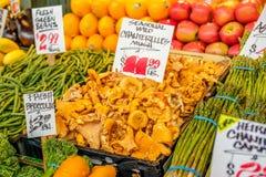 Cogumelos orgânicos frescos, frutas e legumes Imagem de Stock