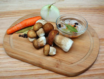 Cogumelos para conservar Foto de Stock Royalty Free