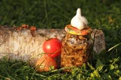 Cogumelos postos de conserva da floresta Foto de Stock
