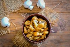 Cogumelos Roasted Cogumelos roasted caseiros em uma bacia em um fundo de madeira Receita do jantar de baixo-caloria do vegetarian foto de stock