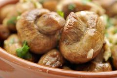 Cogumelos Sauteed Imagens de Stock