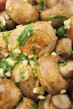 Cogumelos Sauteed Foto de Stock Royalty Free