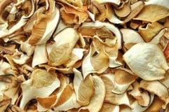 Cogumelos secados Fotografia de Stock Royalty Free
