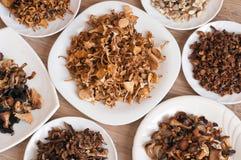 Cogumelos secados de variedades diferentes Imagem de Stock