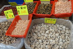 Cogumelos secados e marisco Imagem de Stock