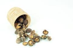 Cogumelos secos Imagens de Stock Royalty Free