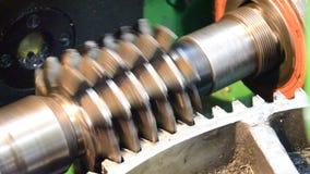 Cogwheel βιομηχανική μηχανή παραγωγής και υπηρεσιών απόθεμα βίντεο