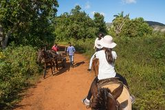 Cohabitation between tourists on horseback and Cubans with the w. Vinales, Cuba - december 5, 2017: Cohabitation between tourists on horseback and Cubans with Royalty Free Stock Photos