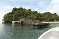 Coiba Royalty Free Stock Photo