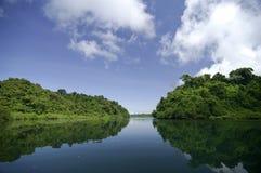 Coiba island. Mangrove swamp at Coiba National Park. Coiba Island, Veraguas province, Pacific ocean, Panama, Central America Royalty Free Stock Images