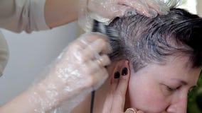 Coiffeur professionnel, client f?minin de coloration de cheveux de styliste Le concept de la beaut? et de la mode banque de vidéos