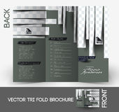 Coiffeur Tri-Fold Brochure Images stock
